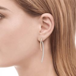 Jeulia Magic Curve Drop Earrings